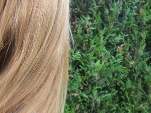 Mes cheveux presque secs, après le soin smoothie ;) l'état de mes racines naturelles, qui sont de plus en plus voyantes .... presque 3/4cm