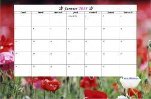 ✰ Calendrier gratuit à imprimer 2015 ✰