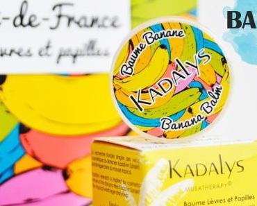 Baume lèvres et papilles de Kadalys