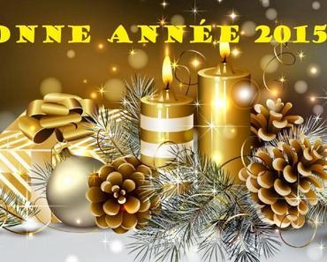 ✰ Bonne année 2015 !!!! ✰