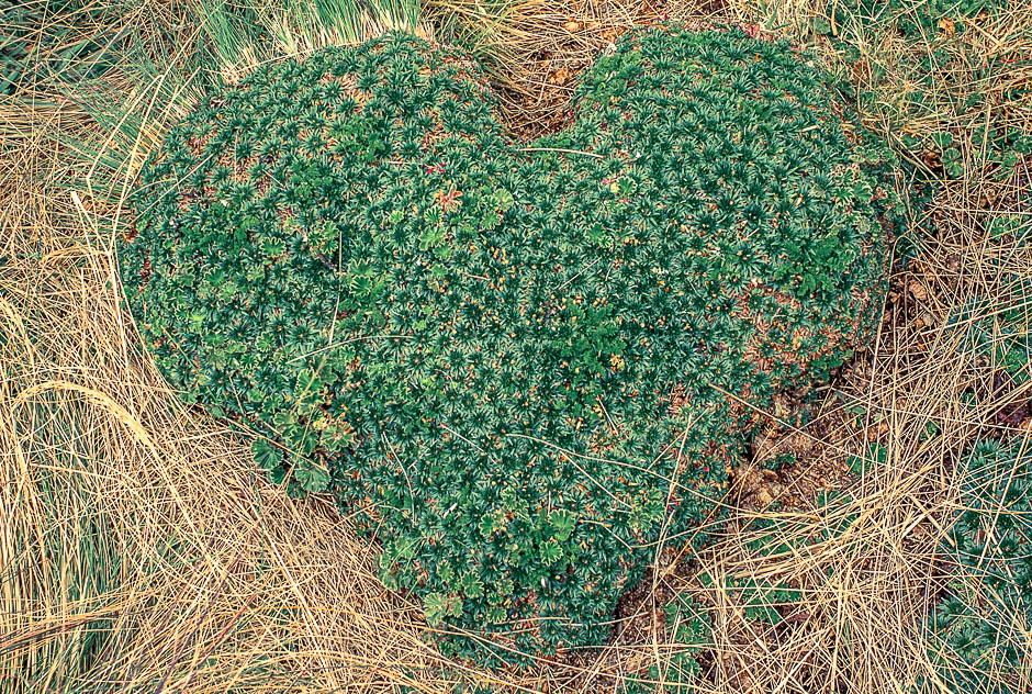 hellocoton-monagrom-communaute-beaute-partage