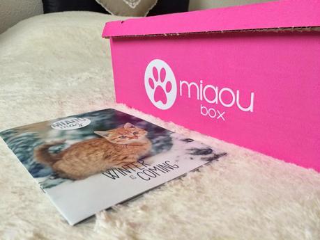 Je suis une blogueuse à chat + MIAOUBOX - Winter is coming (Janvier 2015)