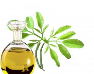 Restaurer les cheveux secs par les huiles