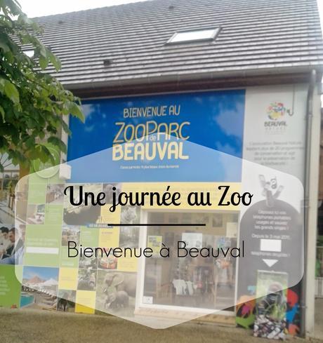 > Une journée au Zoo : bienvenue à Beauval !