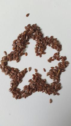 Gel de graines de lin : gel coiffant naturel