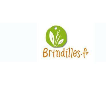 A la découverte de la boutique Brindilles (concours)