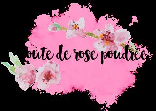 Que contient la Newsletter de Toute de Rose Poudrée ?