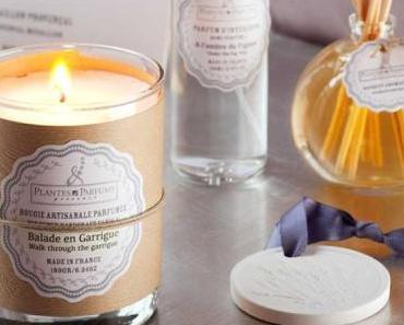 Vente privée : Plantes & Parfums Provence