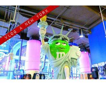 Vlog à New York #1 : deux hyperactifs dans la Big Apple !