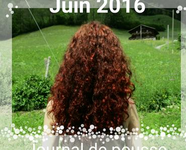 Journal de pousse - Juin 2016