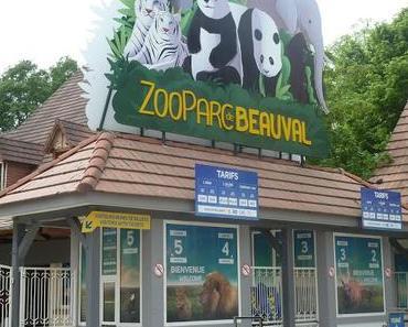 Une journée au Zoo-Parc de Beauval