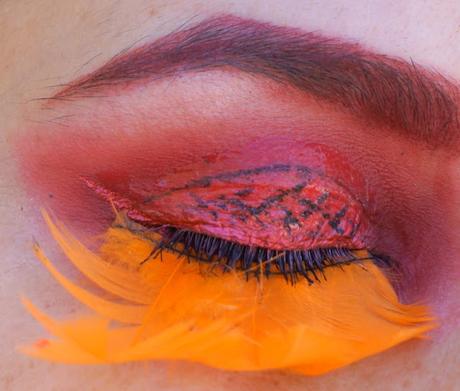 Aile de papillon tangerine pour la MSC