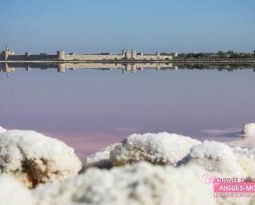 Une journée pour découvrir Aigues-Mortes