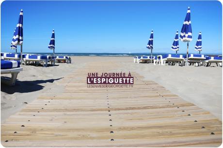 Une journée à l'Espiguette #plage #food #bateau #cheval