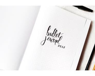 Bullet journal #1  Mon Set up 2018 + Janvier sous les flocons de neige