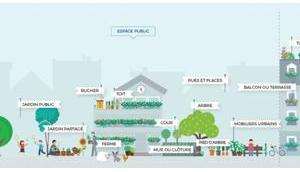 Bons Plans jardin pour parisiens