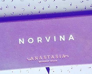 La Norvina palette de chez Anastasia Beverly Hills