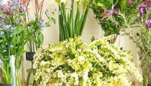 bons plans Bouquets fleurs