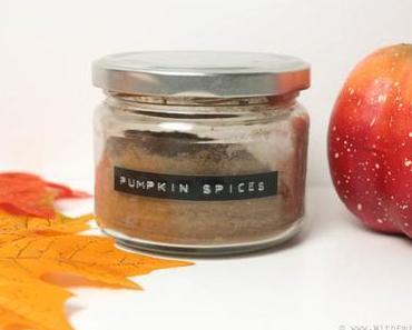 Le mélange d'épices «Pumpkin Pie Spice» fait maison