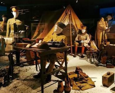 Expérience immersive au Musée de la Grande Guerre de Meaux