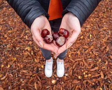 5 façons de garder le moral en automne